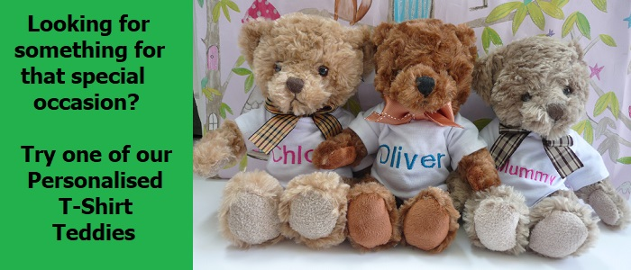 Personalised T-Shirt Teddy Slider